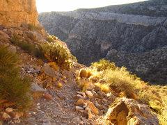 Rock Climbing Photo: Sunrise at Potosi