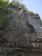 Rock Climbing Photo: Random Sport Climb.