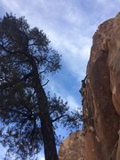 Rock Climbing Photo: Kyle, coming around the arete right before getting...
