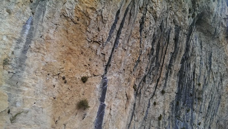 Rock Climbing Photo: Like a natural cathedral but better because you ca...