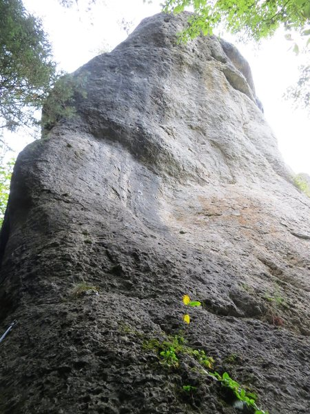 The west face of Rabenfels, home to two steep Wolfgang Gullich pocket climbs:  Ghettoblaster and West Side Story.