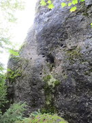 Rock Climbing Photo: The brief, yet incredibly mossy Normalweg, on the ...