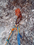 Rock Climbing Photo: The descent rings
