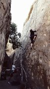 Rock Climbing Photo: Amy Sturdivant on Amadeus II Motzarts Wall 5.10a