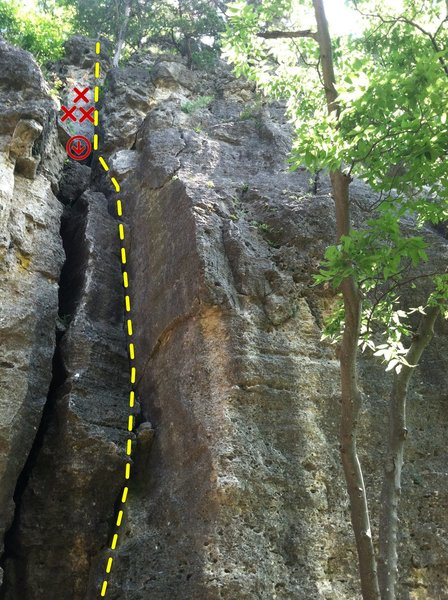 Rock Climbing Photo: Top View of 1st Crack