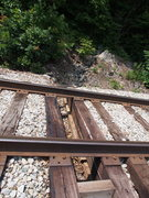 "Rock Climbing Photo: The 8"" drainage ditch through the tracks. Thi..."