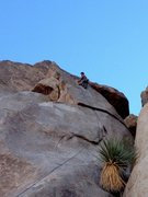 Rock Climbing Photo: Quality line - quality route.