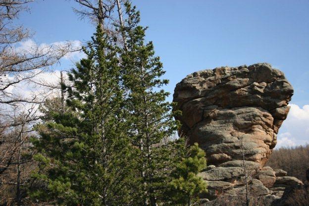 Rock Climbing Photo: Beautiful rock up there!