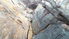 Rock Climbing Photo: Biohazard.  Pretty route