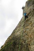 Rock Climbing Photo: The juggy lower half of Katalysator.