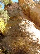 Rock Climbing Photo: The Onceler-Pitch