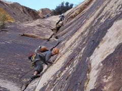 Rock Climbing Photo: where Frogland and Bourbon Street split. climbers ...