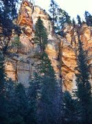 Rock Climbing Photo: The Lorax