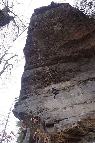 Rock Climbing Photo: 1st 5.12a (Twinkie) @ Red River Gorge