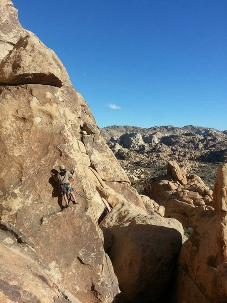 Chad Parker leading Gandy in Joshua Tree National Park/Outer Mongolia/Siberia 2.5 mile hike in all flat.
