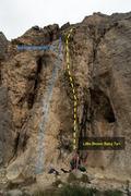 Rock Climbing Photo: Little Brown Baby