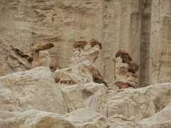 Rock Climbing Photo: Five Little Indians