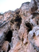 Rock Climbing Photo: Flower Tower is the column just right of center.  ...