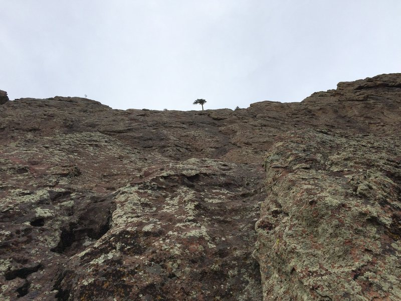 Rock Climbing Photo: Follow the tree (that you can only see for the las...