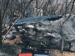 Rock Climbing Photo: Bar fly