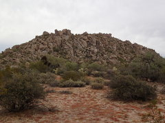 Rock Climbing Photo: Cholla Mountain (as seen from the South)