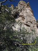 Rock Climbing Photo: Start is a bit overgrown.