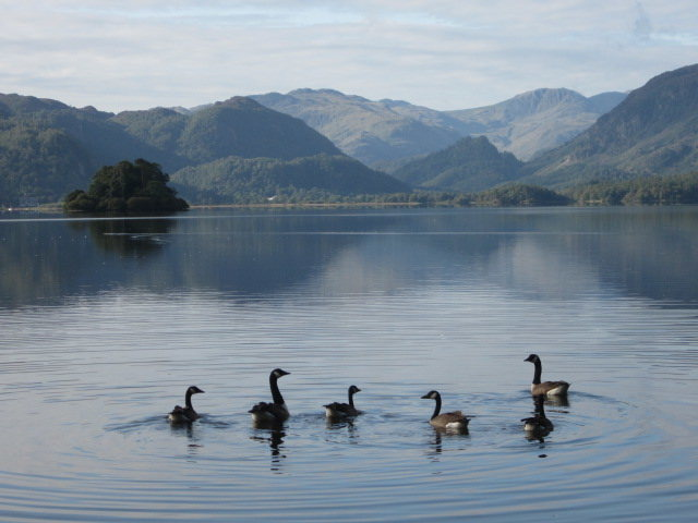 Derwentwater .. Borrowdale .. Lake District