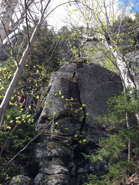 Look for this obvious splitter right off the trail, a couple hundred feet right of Sad Peter. Either climb it to the ledge, or scramble around to the left to access the routes.