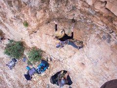 Rock Climbing Photo: Deanna fell off the crux move.