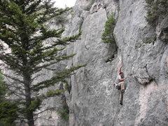Rock Climbing Photo: Ben leading Skinwalker