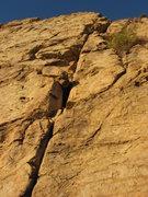 Rock Climbing Photo: Top Rope Crack Climb