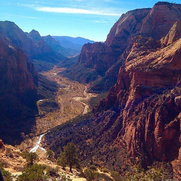 Rock Climbing Photo: Zion !