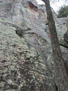 Rock Climbing Photo: Sneakers, outside view