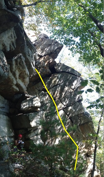 Rock Climbing Photo: Up in Arms