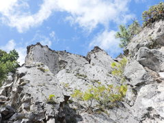 Rock Climbing Photo: Cerro Quemado, looking up.