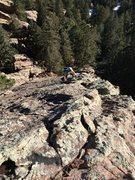 Rock Climbing Photo: Upper ridge. We missed the lower ramp. I saw where...