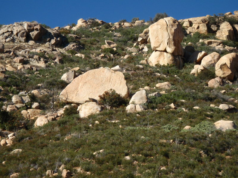 Rock Climbing Photo: Jumbo from a distance
