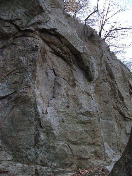 More Quarry.<br> <br> <em>Originally posted by: *^$</em>