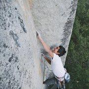 arch rock .11d