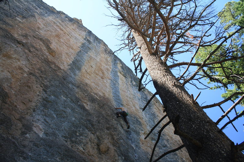 Rock Climbing Photo: Center Shinto, Ten Sleep.