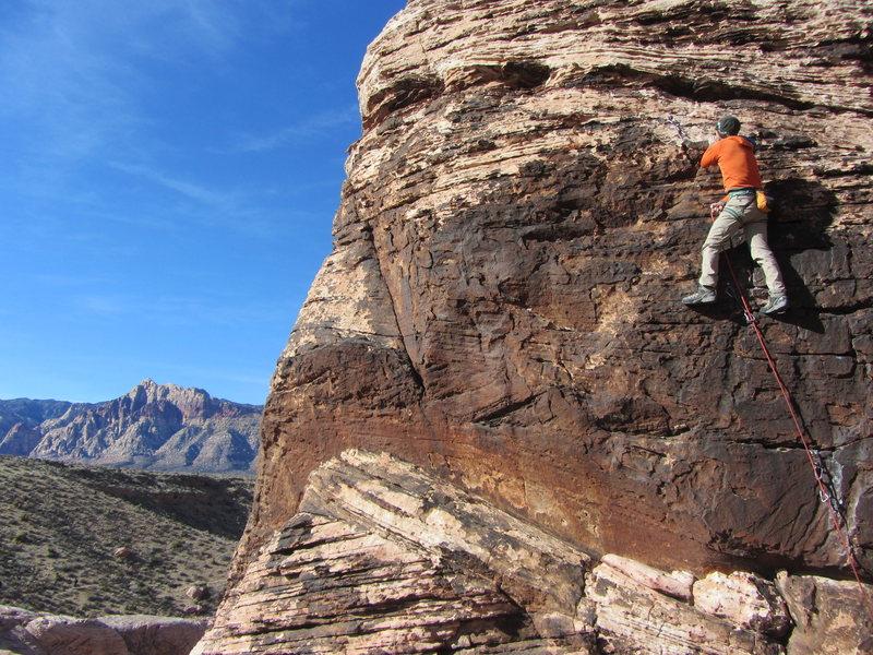 Rock Climbing Photo: Wilder nearing the top of a street shoe send of Li...