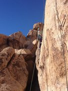Rock Climbing Photo: Stacy Otto on Shattered 5.10c Joshua Tree.