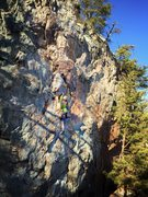 Rock Climbing Photo: View of 5.8 line between CroMagnon and Rocky & Bul...