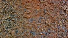 Rock Climbing Photo: The rock pattern of Gyrus. This particular pattern...
