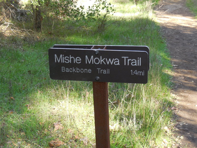 Sign on the way to Balanced Rock, just before the turnoff from the Mishe Mokwa.