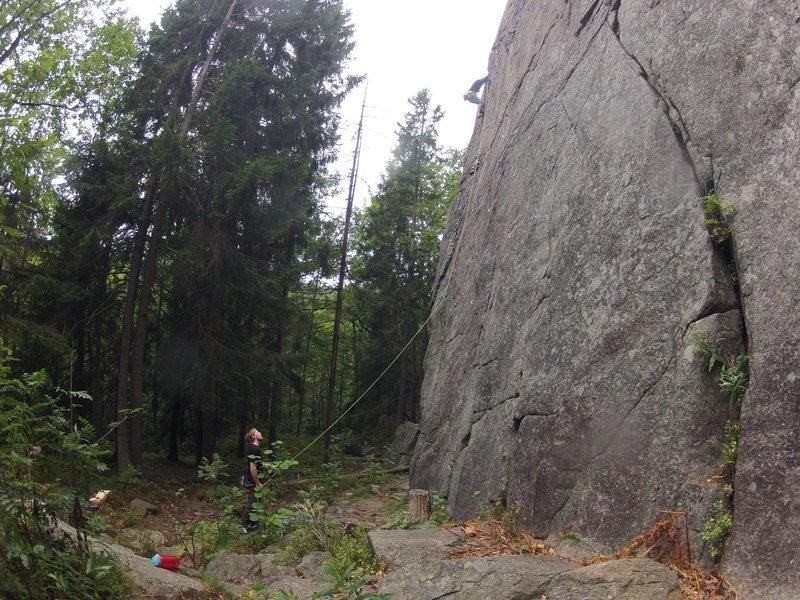 Valle, Telemark<br> 2013