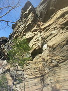 Rock Climbing Photo: This pic doesn't do the line justice, but you get ...