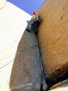 Rock Climbing Photo: Then you climb the crack, SON!