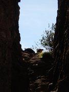 Rock Climbing Photo: In the confines of Corvus Crack.