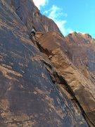 Rock Climbing Photo: Matt placing gear.
